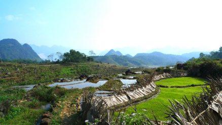 Pu Luong Nature